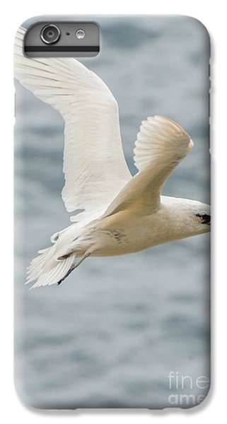 Tropic Bird 2 IPhone 6s Plus Case by Werner Padarin