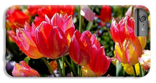 Tulip Garden IPhone 6s Plus Case by Rona Black