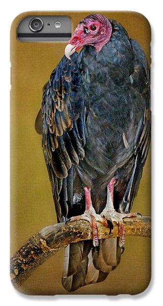 Buzzard iPhone 6s Plus Case - Turkey Vulture by Nikolyn McDonald