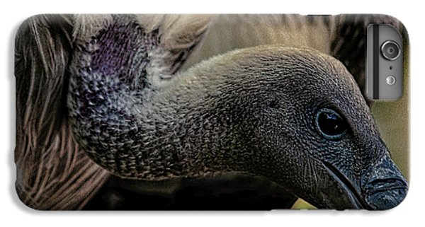 Vulture IPhone 6s Plus Case by Martin Newman