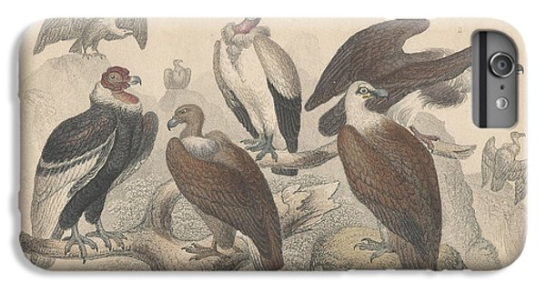 Vultures IPhone 6s Plus Case by Rob Dreyer