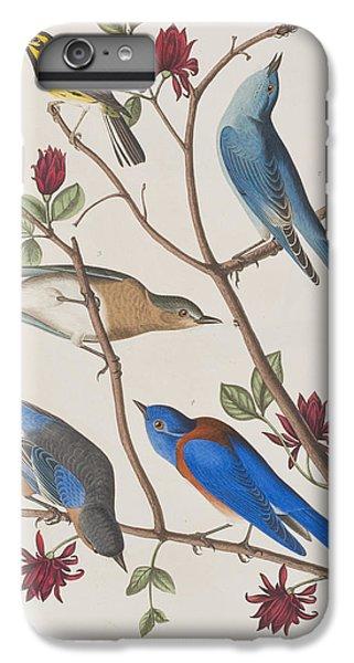 Bluebird iPhone 6s Plus Case - Western Blue-bird by John James Audubon