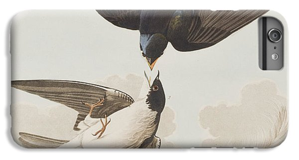 White-bellied Swallow IPhone 6s Plus Case by John James Audubon