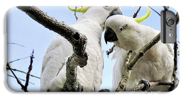 White Cockatoos IPhone 6s Plus Case by Kaye Menner
