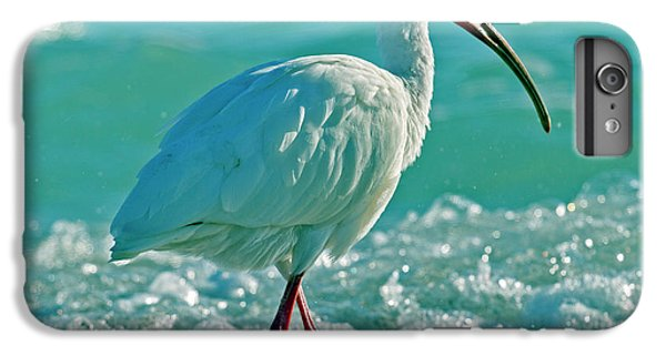 Ibis iPhone 6s Plus Case - White Ibis Paradise by Betsy Knapp