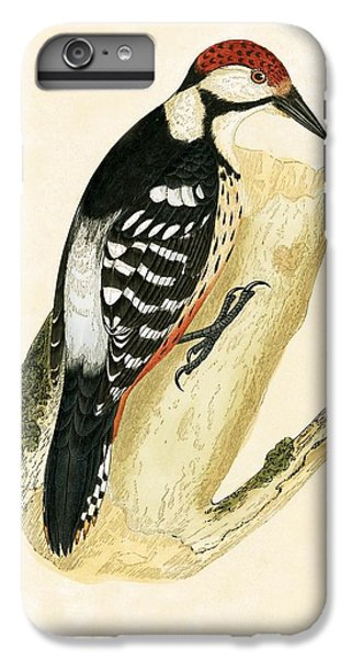 White Rumped Woodpecker IPhone 6s Plus Case by English School
