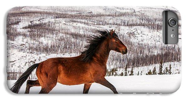 Horse iPhone 6s Plus Case - Wild Horse by Todd Klassy