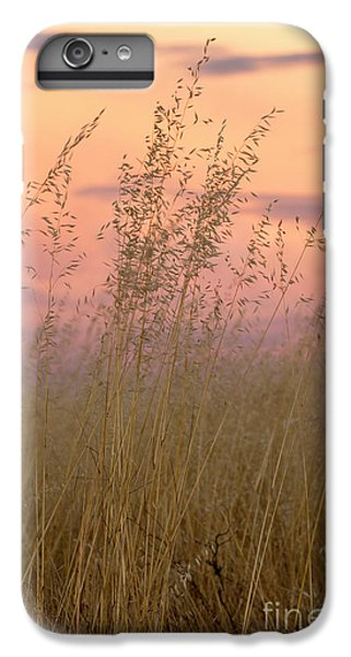 IPhone 6s Plus Case featuring the photograph Wild Oats by Linda Lees