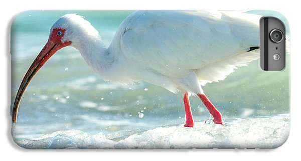 Ibis iPhone 6s Plus Case - Wild Winds by Betsy Knapp