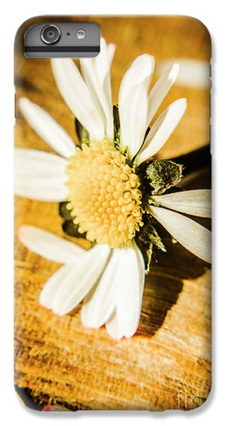 Daisy iPhone 6s Plus Case - Wilt by Jorgo Photography - Wall Art Gallery