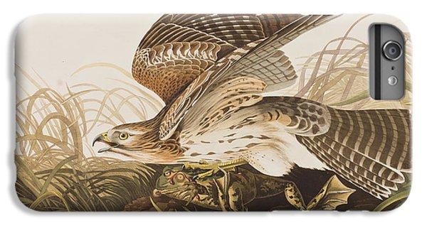 Winter Hawk IPhone 6s Plus Case by John James Audubon