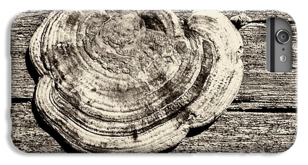 IPhone 6s Plus Case featuring the photograph Wood Decay Fungi, Nagzira, 2011 by Hitendra SINKAR