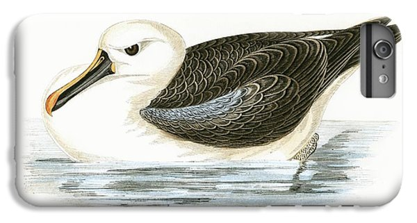 Yellow Nosed Albatross IPhone 6s Plus Case by English School