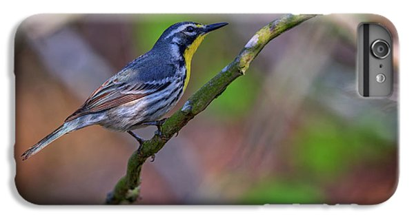 Yellow-throated Warbler IPhone 6s Plus Case by Rick Berk