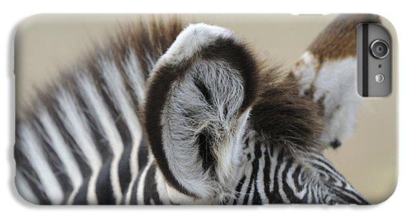 Zebra Ears IPhone 6s Plus Case by David & Micha Sheldon