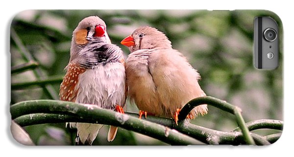 Zebra Finch Colloquy IPhone 6s Plus Case