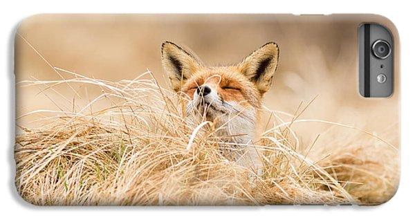 Fox iPhone 6s Plus Case - Zen Fox Series - Zen Fox 2.7 by Roeselien Raimond