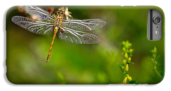 Dragon iPhone 6s Plus Case - Beautiful Nature Scene With Common by Ondrej Prosicky
