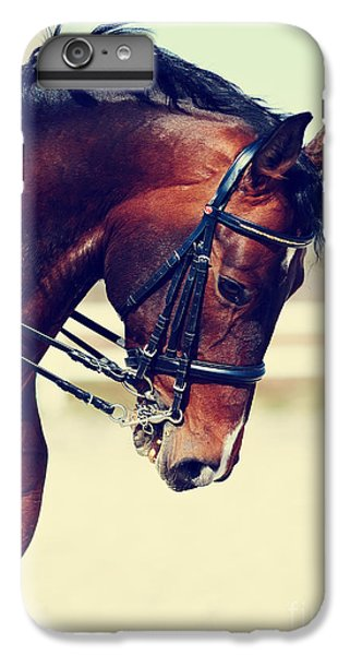 Fitness iPhone 6s Plus Case - Brown Stallion. Portrait Of A Sports by Elya Vatel