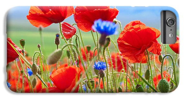 Scarlet iPhone 6s Plus Case - Field Of Wild Poppies And Other Flowers by Maria Uspenskaya