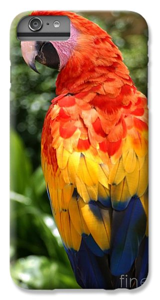 Scarlet iPhone 6s Plus Case - Macaw Sitting On A Branch by Paul Banton