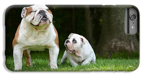 Fitness iPhone 6s Plus Case - Puppy And Adult Dog Playing Outside - by Willeecole Photography
