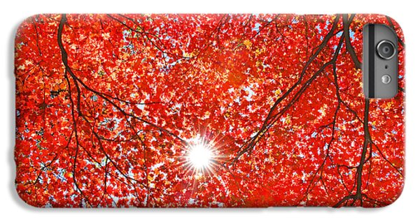 Scarlet iPhone 6s Plus Case - Sun Light Through The Red Fall Maple by Maxim Tupikov