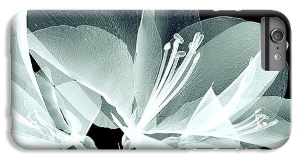 Floral iPhone 6s Plus Case - Xray Image Of A Flower  Isolated On by Posteriori