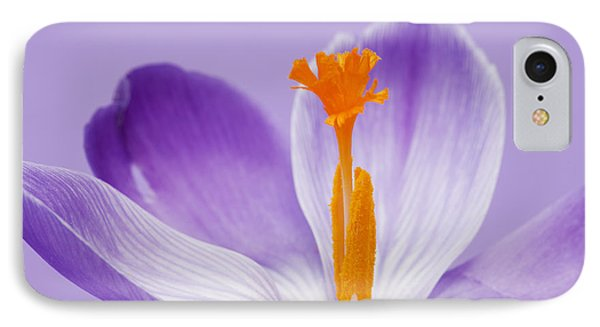 Abstract Purple Crocus IPhone Case
