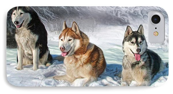 Alaskan Malamute IPhone Case by Trudi Simmonds