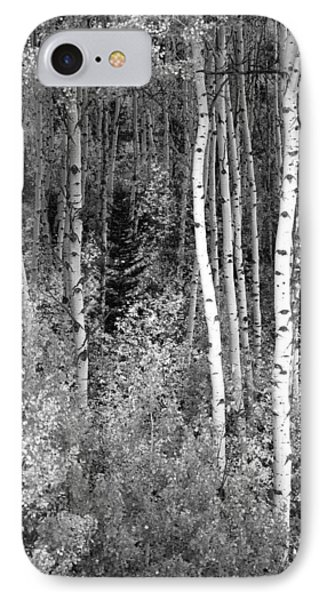 IPhone Case featuring the photograph  Aspen Autumn  by Eric Rundle
