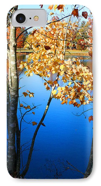 Autumn Trees On The Lake IPhone Case by Lesa Fine