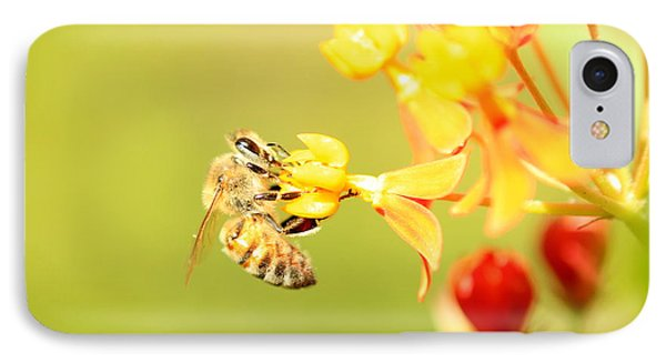 IPhone Case featuring the photograph  Bee On Milkweed by Greg Allore