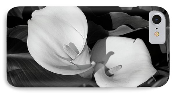 Calla Lilies Bw 1 IPhone Case