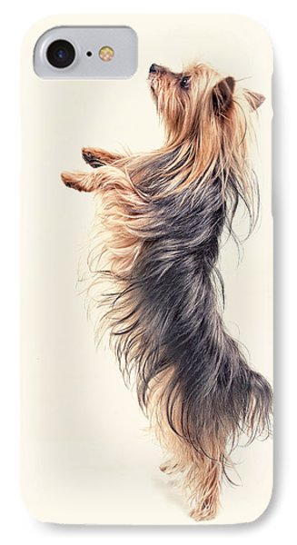 Dancing Yorkshire Terrier Phone Case by Susan Stone