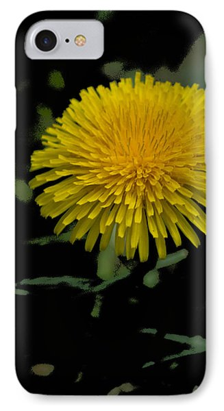 Dandelion  - Glspla529 IPhone Case by G L Sarti