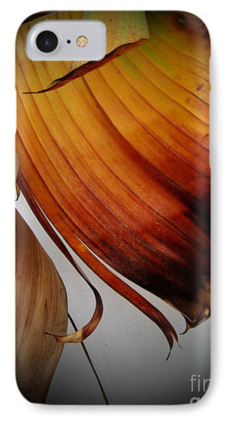 Dried Leaves IPhone Case by Michelle Meenawong