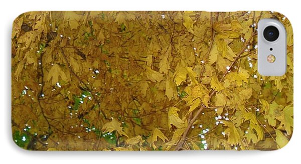 IPhone Case featuring the photograph  Fall Amur Maple  by J L Zarek