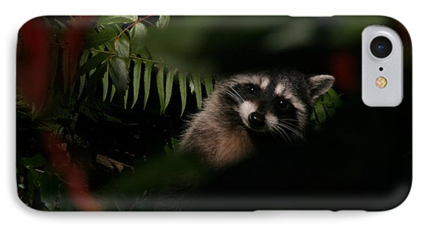 IPhone Case featuring the photograph  I Can See You  Mr. Raccoon by Kym Backland