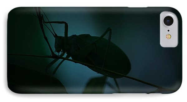 IPhone Case featuring the photograph  It's A Bug... by Tammy Schneider