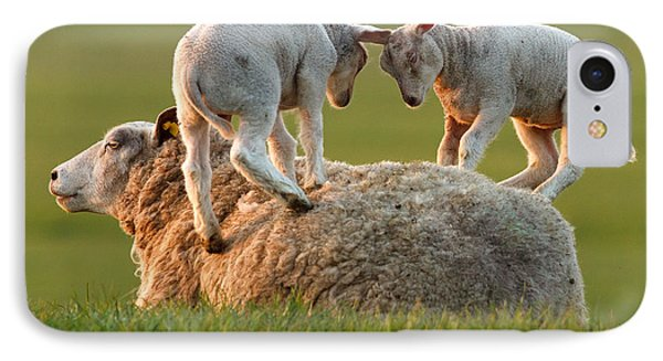 Leap Sheeping Lambs IPhone Case by Roeselien Raimond