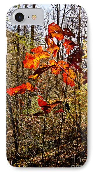 Leaves Of Fall IPhone Case