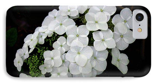 Oak Leaf Hydrangea IPhone Case