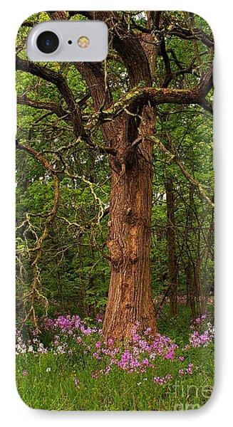Oak Tree And Dame's Rocket Phone Case by Randy Pollard