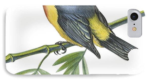 Philippine Flowerpecker Phone Case by Anonymous