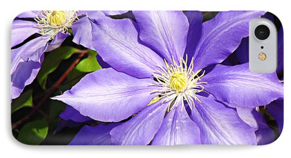 Pretty Purple Clematis IPhone Case by Mindy Bench