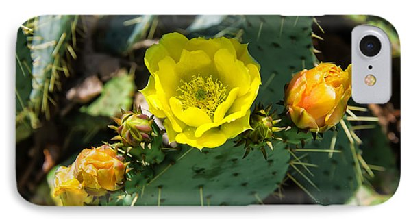 Prickly Pear Cactus And Flowers IPhone Case
