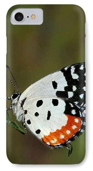 Red Pierrot Butterfly Phone Case by Anonymous