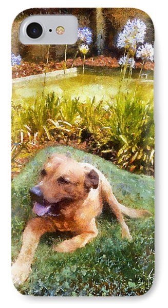 IPhone Case featuring the painting Alameda Rufus by Linda Weinstock
