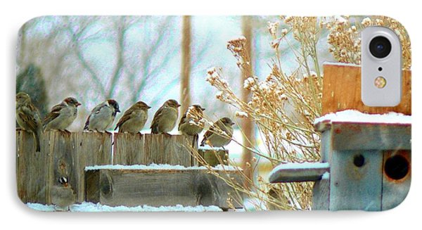 IPhone Case featuring the photograph 7 Winter Sparrows by Deborah Moen